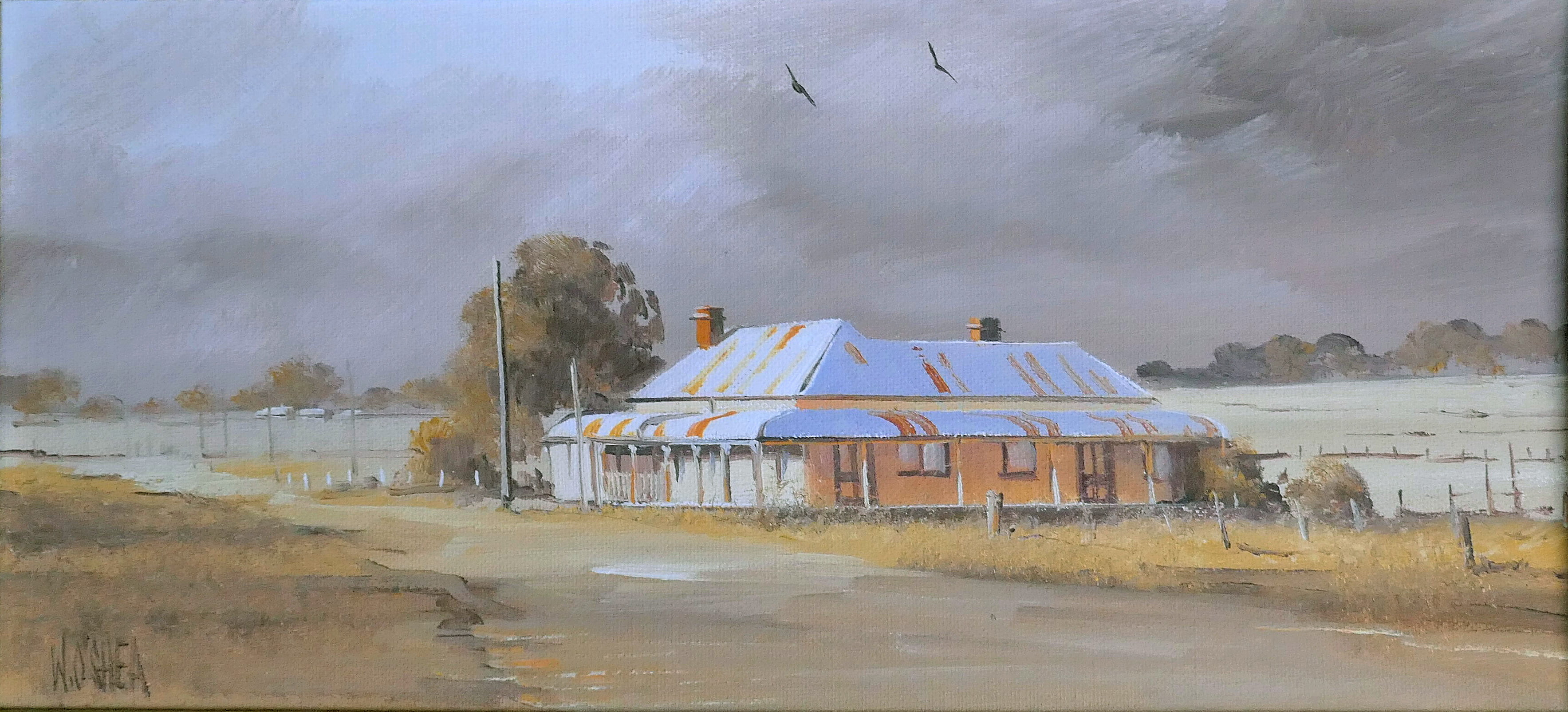 26. Old Shanty,  Glen Innes