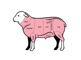 side of lamb